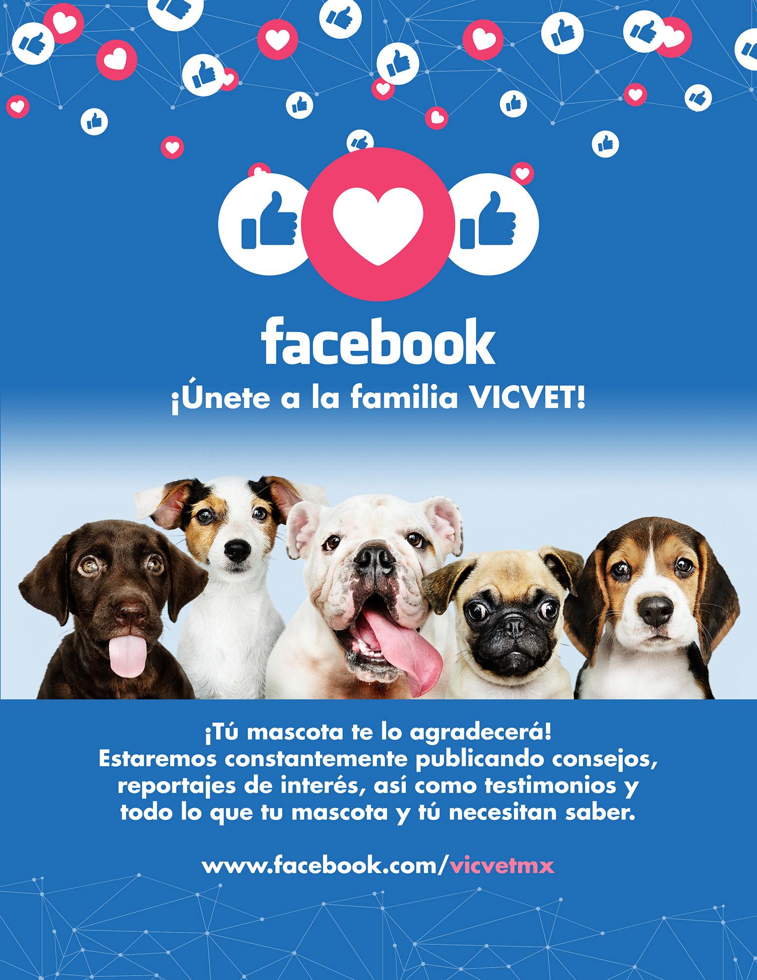 VICVET – Social Media